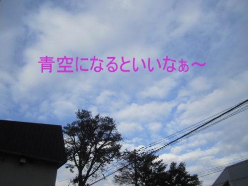 img_9364