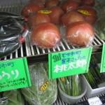 トマトなどが入荷しています~