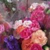 いつもの切り花