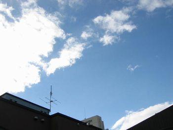 20041113-b1.jpg