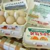 放牧自然卵