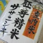 庄内米胚芽精米ササニシキ