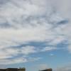 今日はまた曇り空。