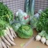 漬物と越冬野菜