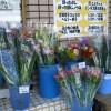 切り花いっぱい