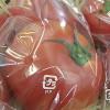 トマトが入荷です~
