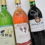 2010 菜根荘ワイン
