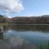 金太郎の池にて