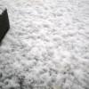 とうとう雪深く・・・