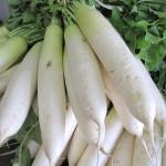 越冬・漬物用野菜いろいろ
