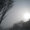 苫小牧の空No.1096 霧の朝