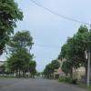 苫小牧の空No.1106