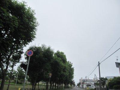 Img_8768