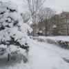 雪国に~~~♪