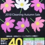 2010 Cleaning Autumn Sale